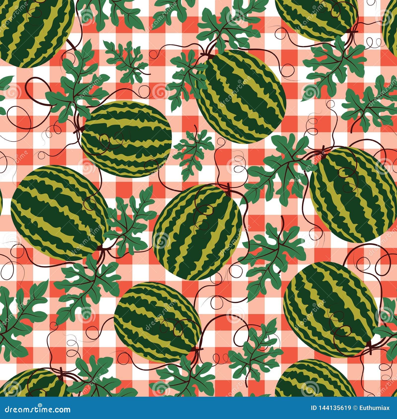 Wektorowy arbuza wzór na czerwonym w kratkę tle owocowy czerwono granatowiec zawartość nasion lato