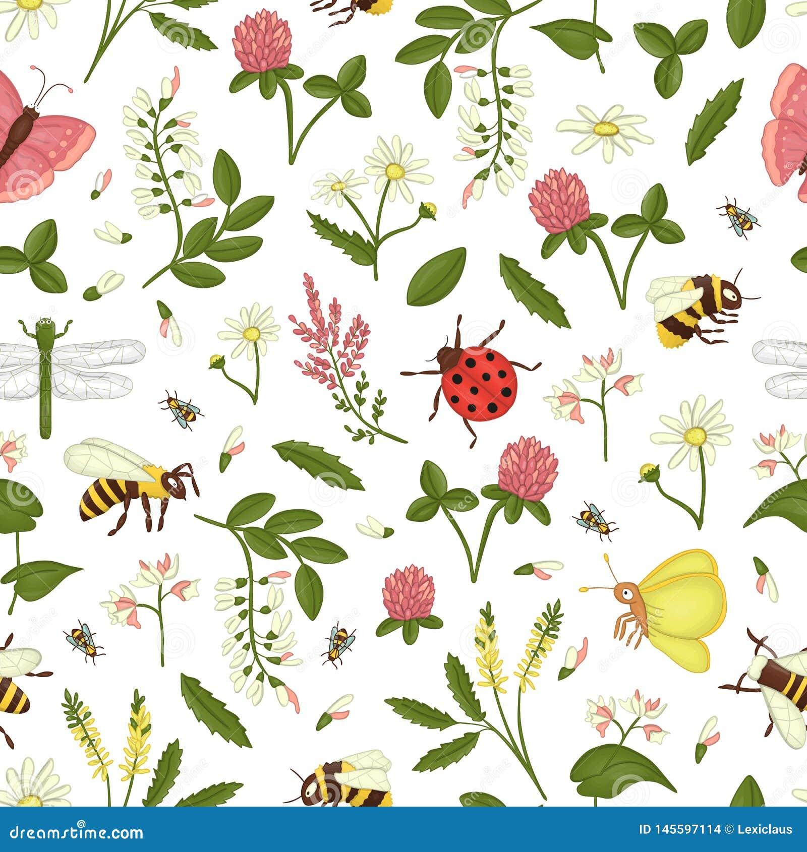 Wektorowy bezszwowy wzór dzicy kwiaty, pszczoła, bumblebee, dragonfly, biedronka, ćma, motyl