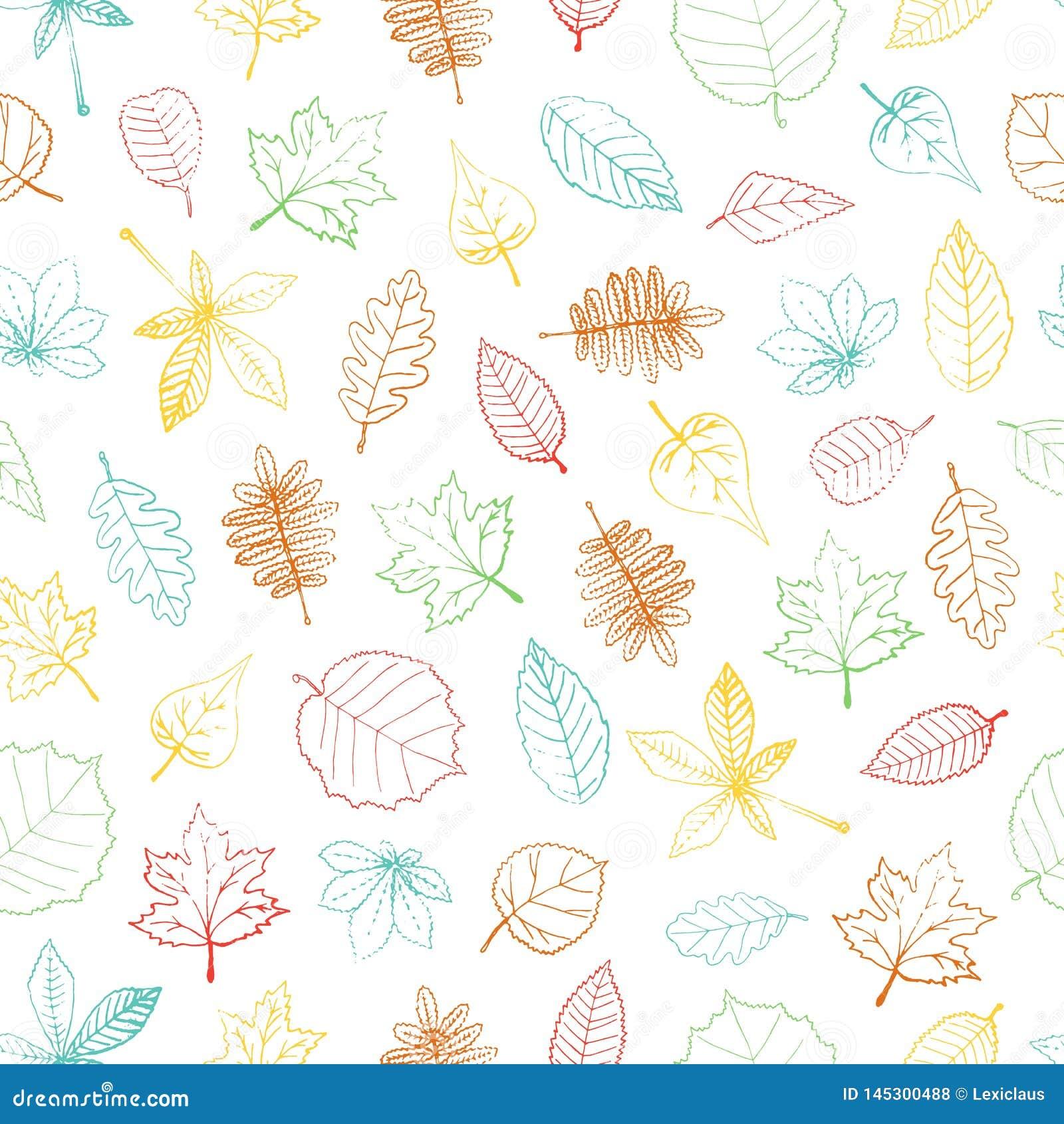 Wektorowy bezszwowy wzór rysujący barwiona ręka textured liść