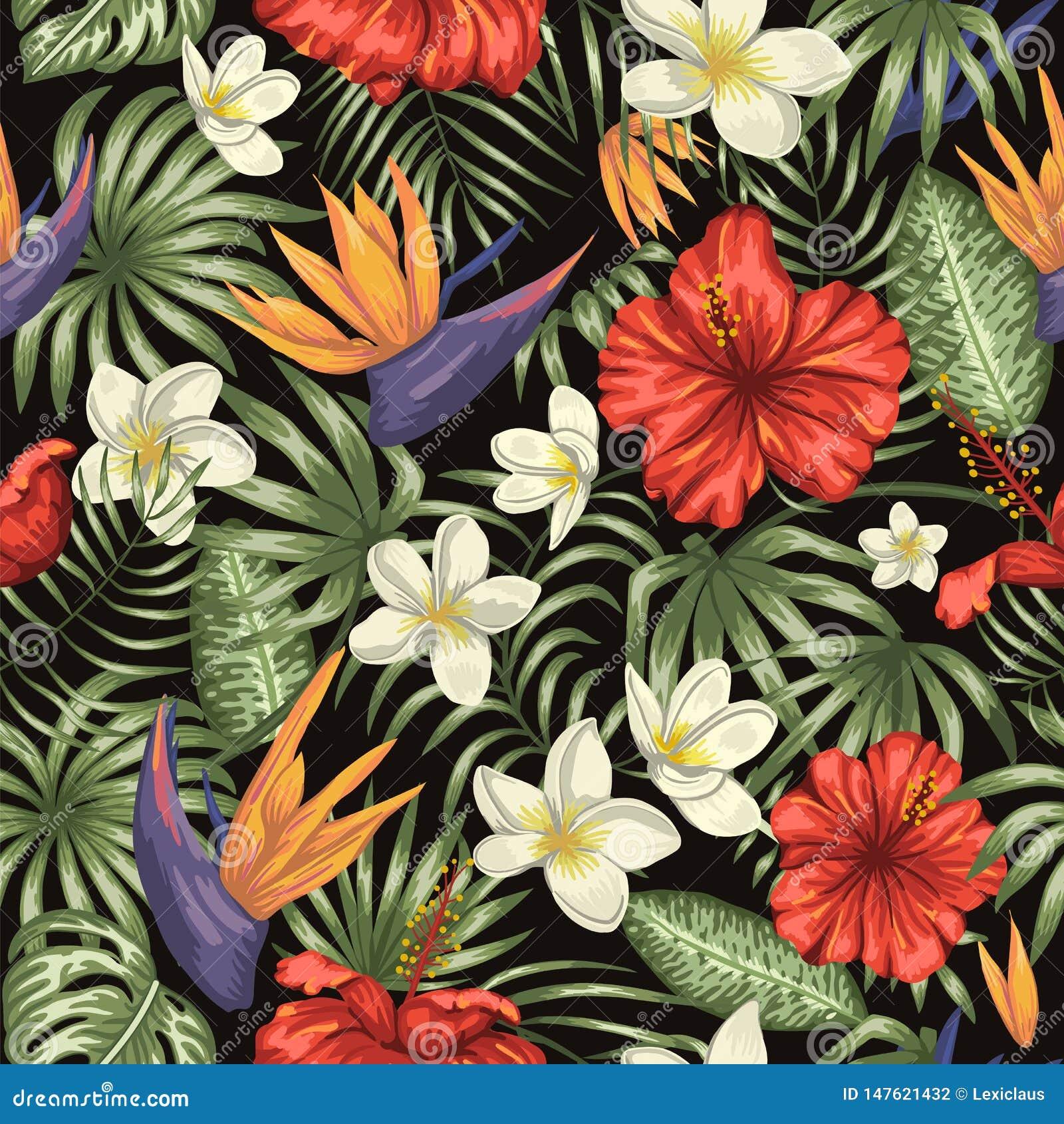 Wektorowy bezszwowy wz?r zieleni tropikalni li?cie z plumeria, strelitzia i po?lubnikiem, kwitnie na czarnym tle