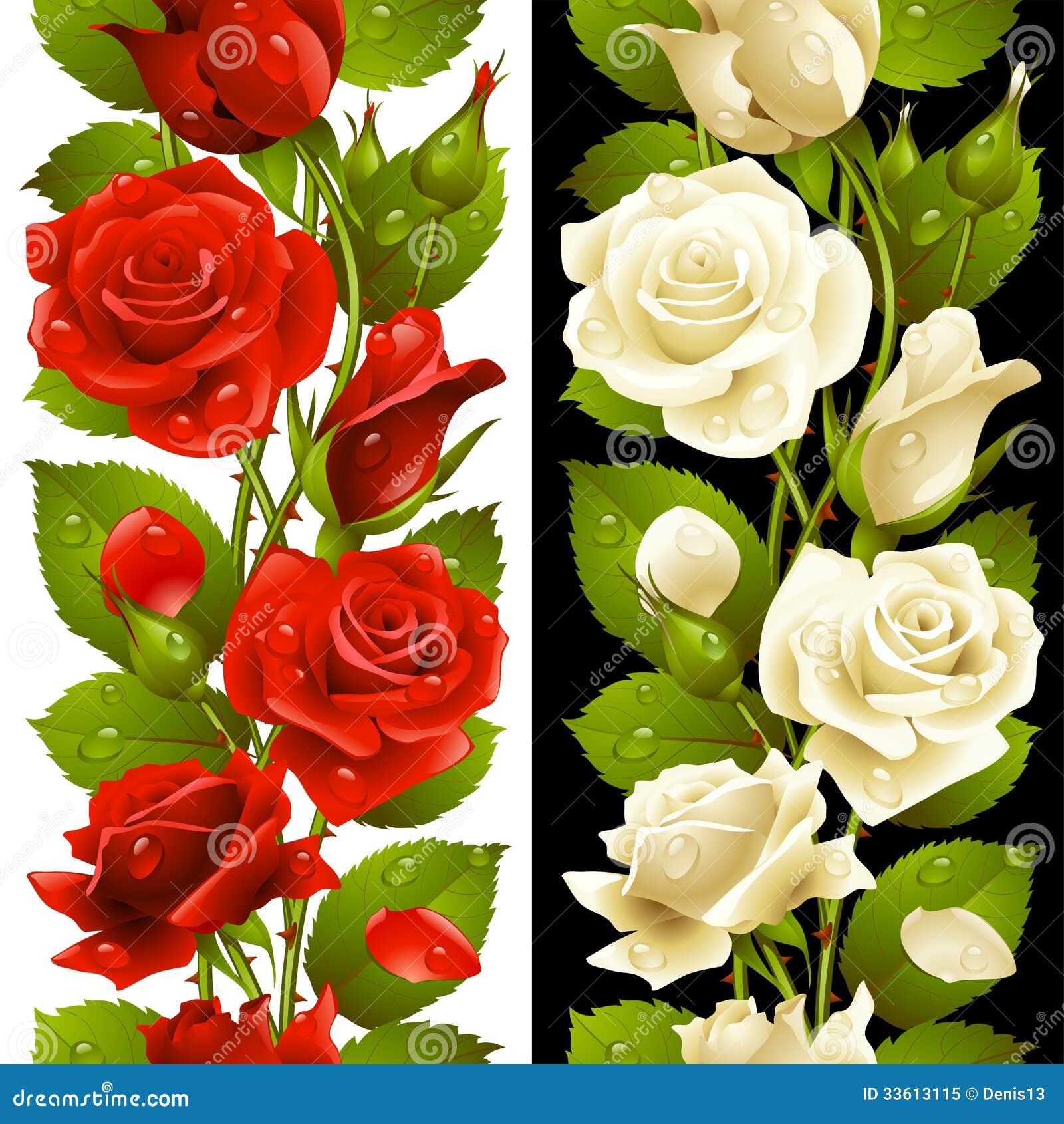 Wektorowy czerwieni i bielu róży pionowo bezszwowy tupocze