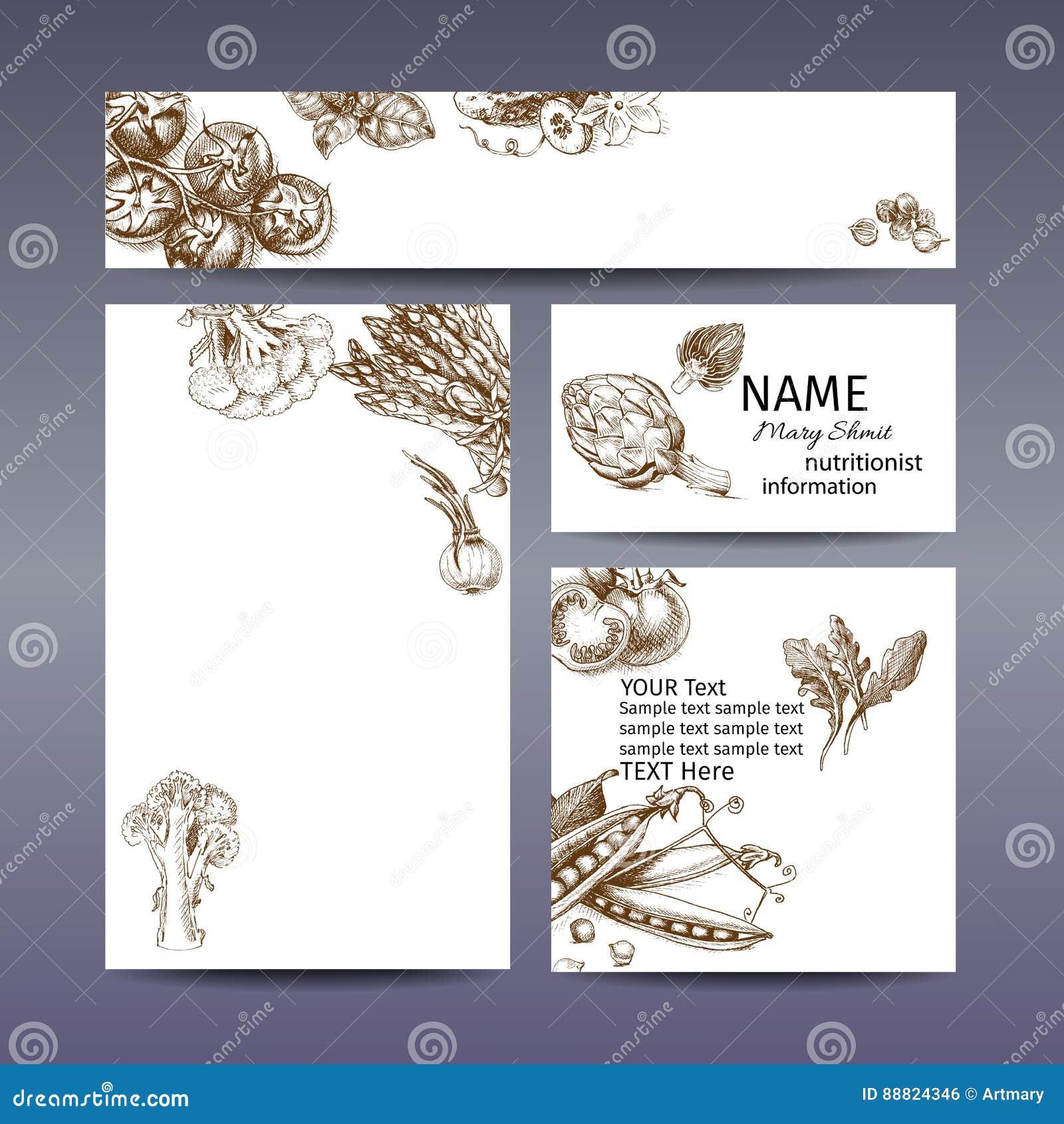 Wektorowy ilustracyjny nakreślenie pomidor, basil, ogórek, kardamon, kapusta, brokuły, kalafior, asparagus, karczoch, cebula, aru