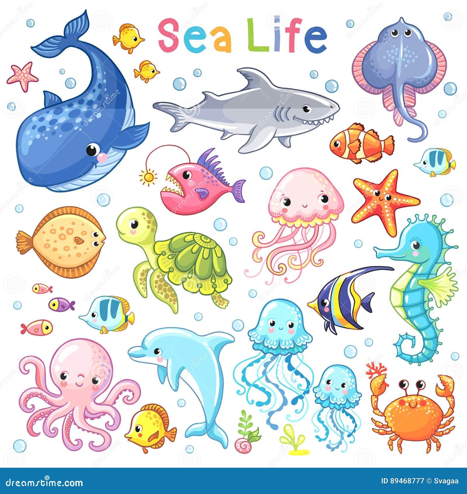 Wektorowy morze set