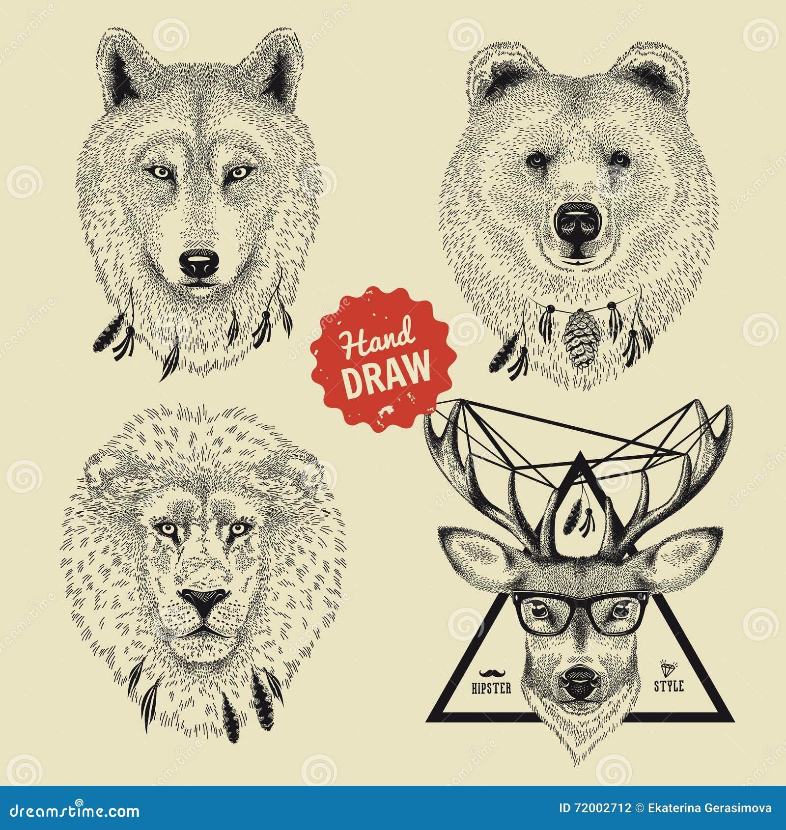 Wektorowy nakreślenie dzikie zwierzę głowy niedźwiedź, wilk, lew, rogacz w modnisia stylu