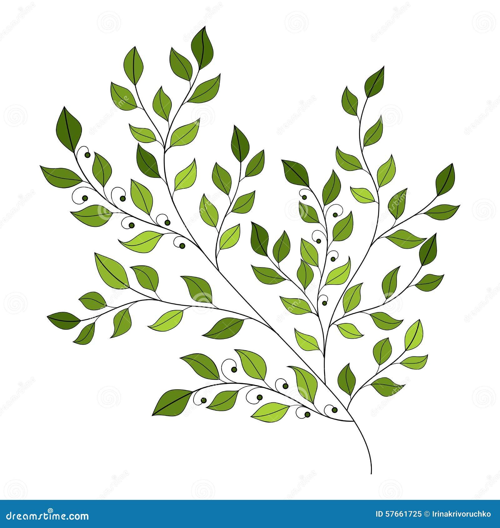 Wektorowy Piękny Barwiony Konturowy liść