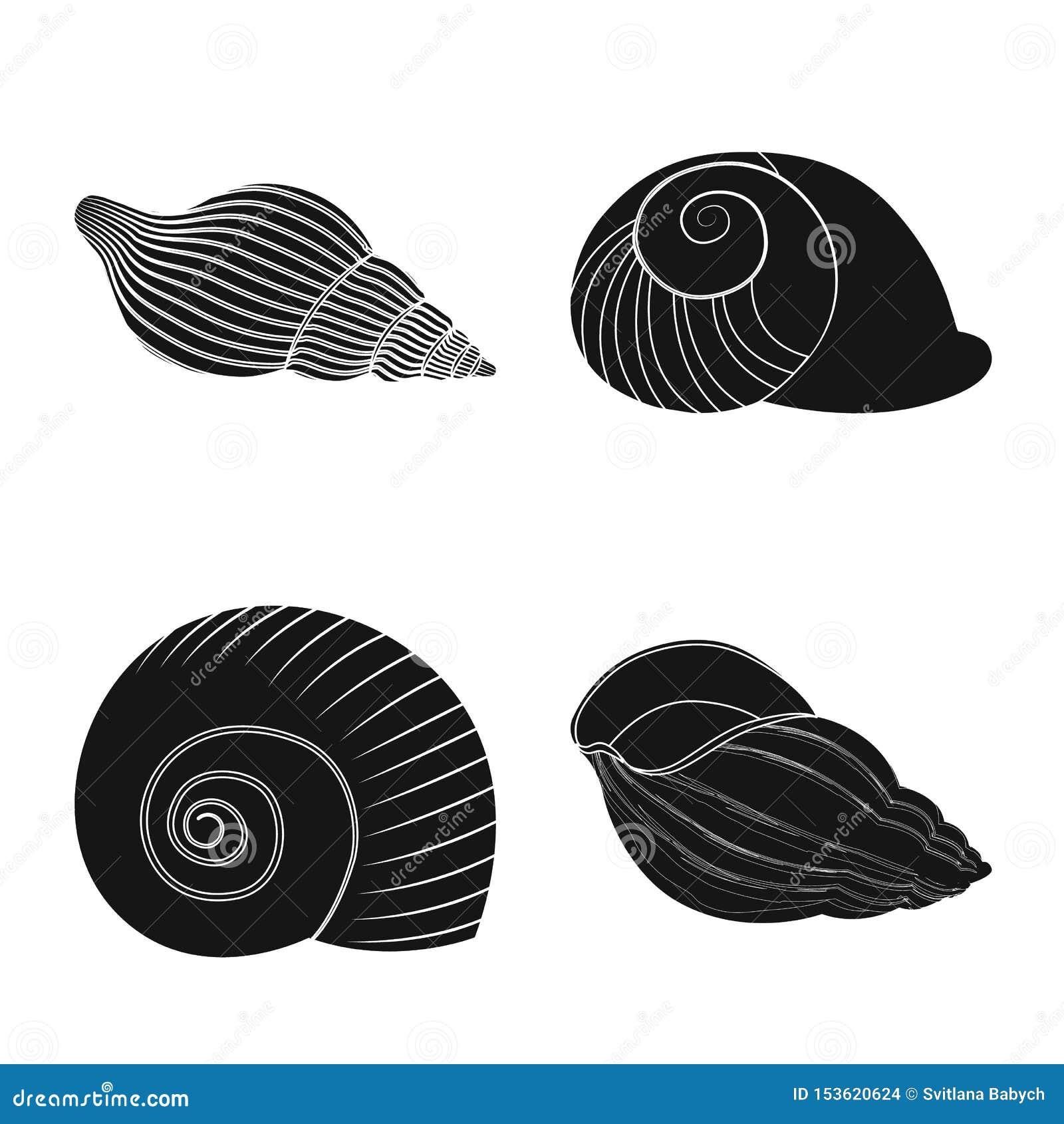 Wektorowy projekt natury i oceanu znak Set natury i mollusk akcyjny symbol dla sieci