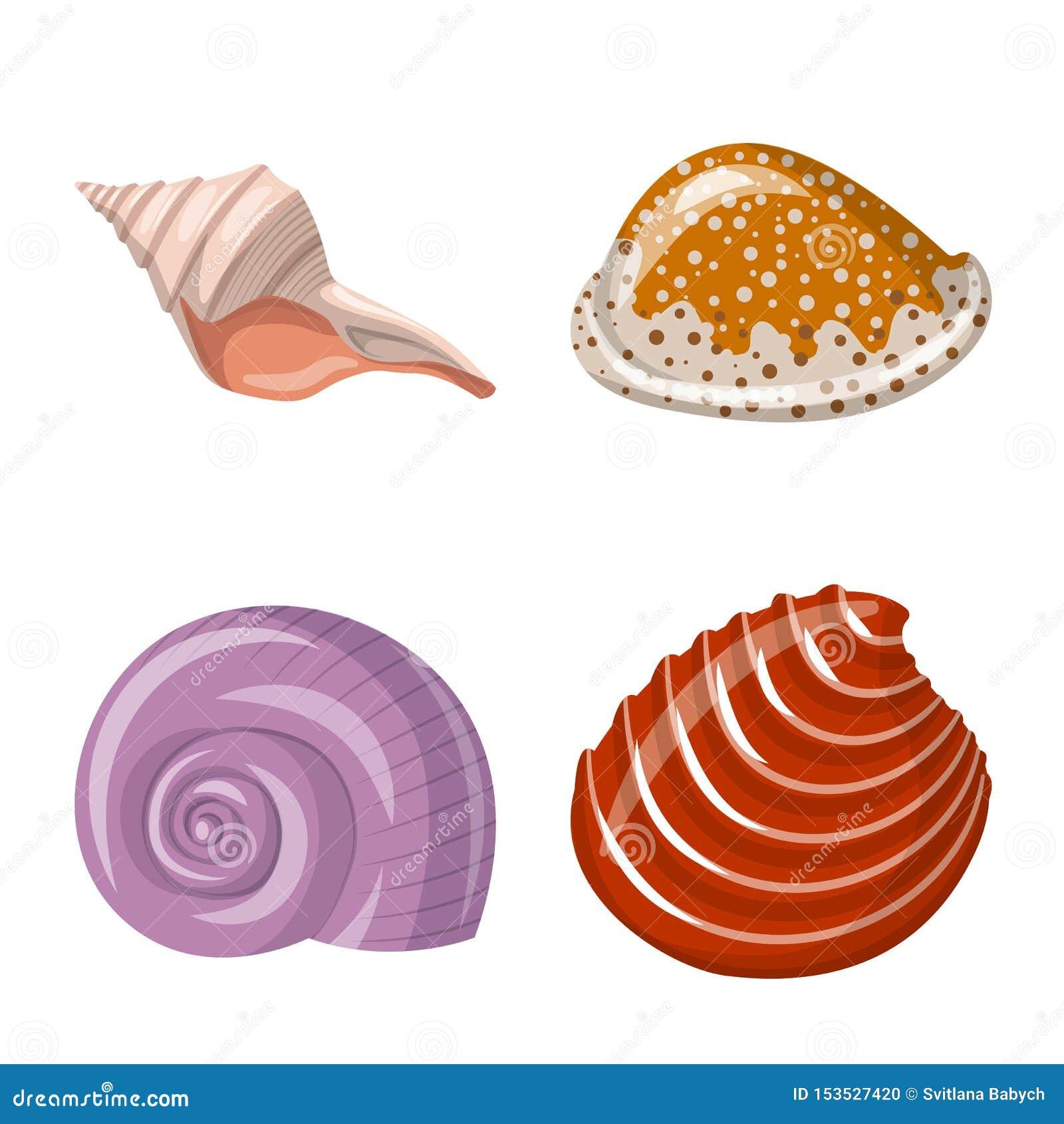 Wektorowy projekt seashell i mollusk symbol Kolekcja seashell i owoce morza akcyjna wektorowa ilustracja