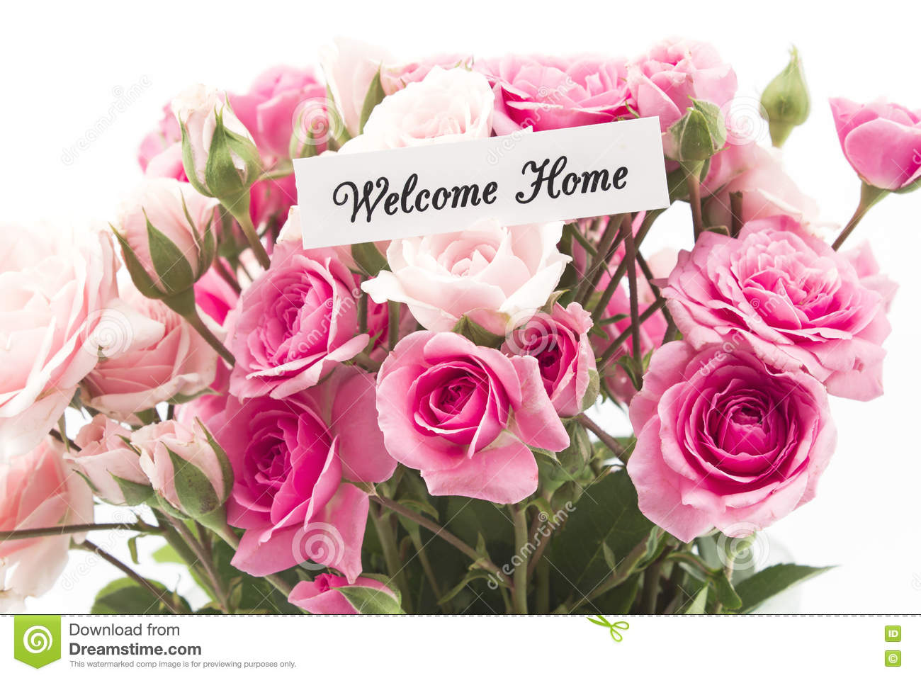 Welcome home card with bouquet of pink roses stock image for Bouquet de fleurs 20 ans