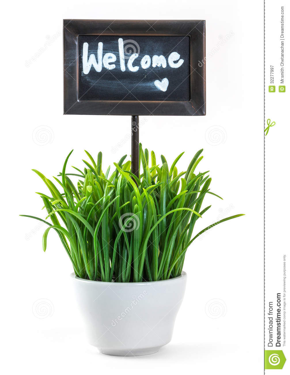 Welcome sign and grass in ceramic pot