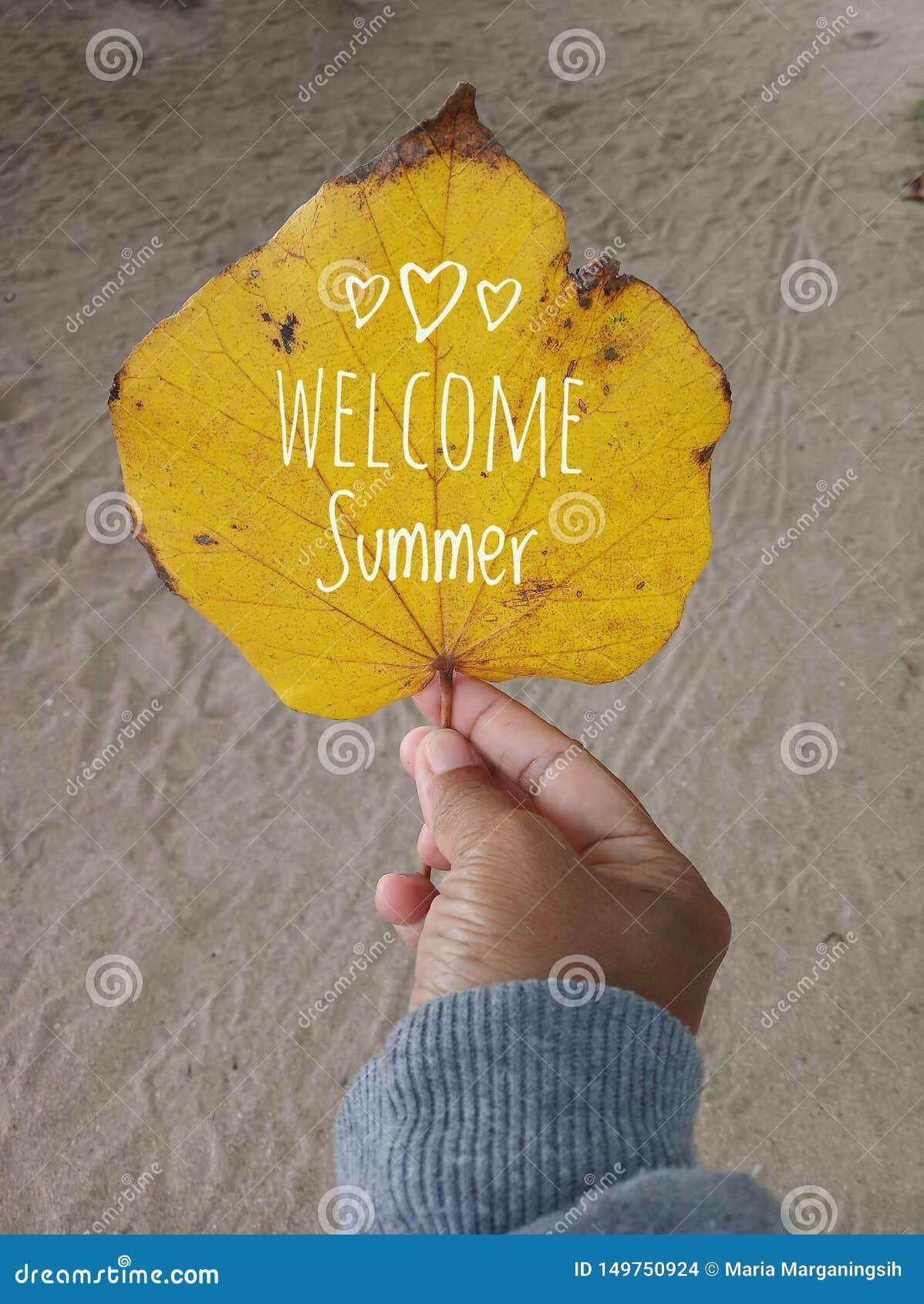 Welkom de zomertekst op een de herfstblad in gele kleur Een jonge vrouwenhand houdt het blad, witte zandachtergrond Menselijk Lic