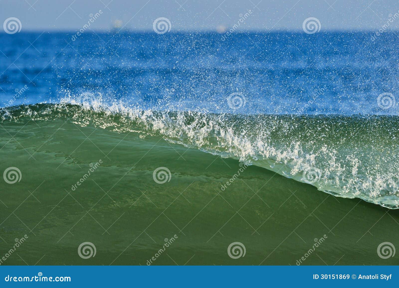 Ozean-Welle