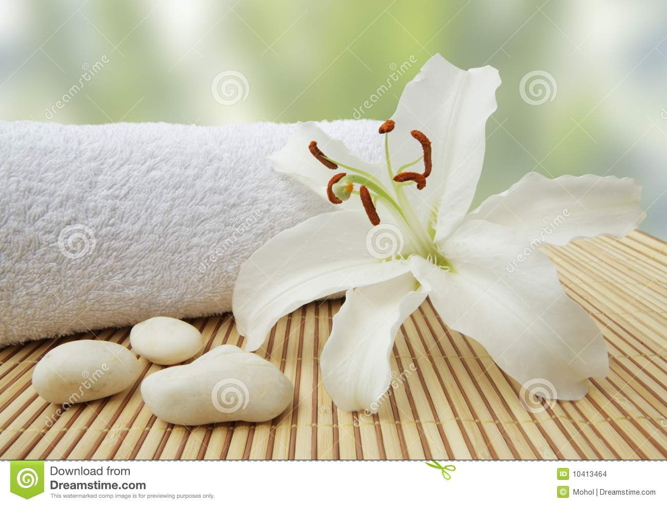 Download Wellness Still Life Pebbles And White Lily Stock Photo - Image of bloom, love: 10413464