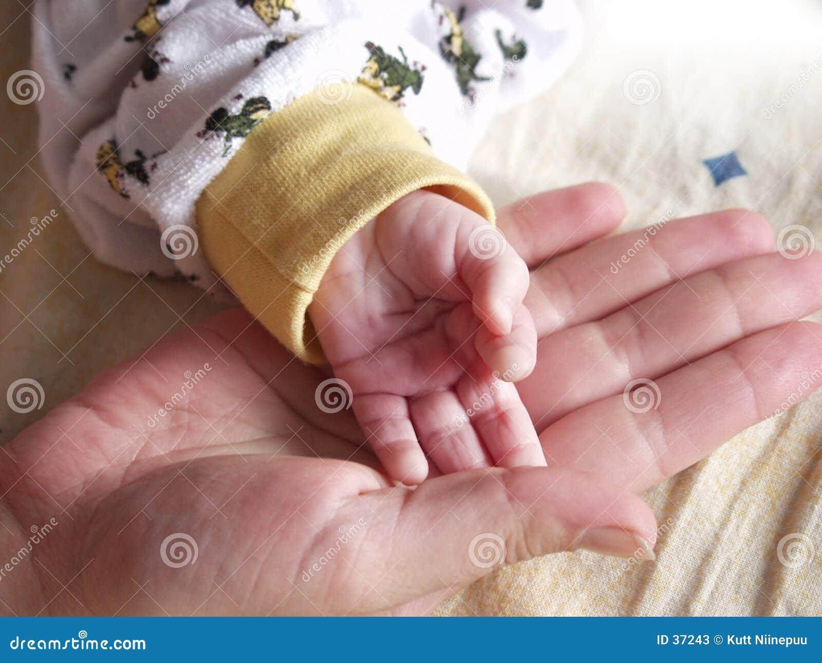 Download Wenig Hand, große Hand stockbild. Bild von compare, sozial - 37243