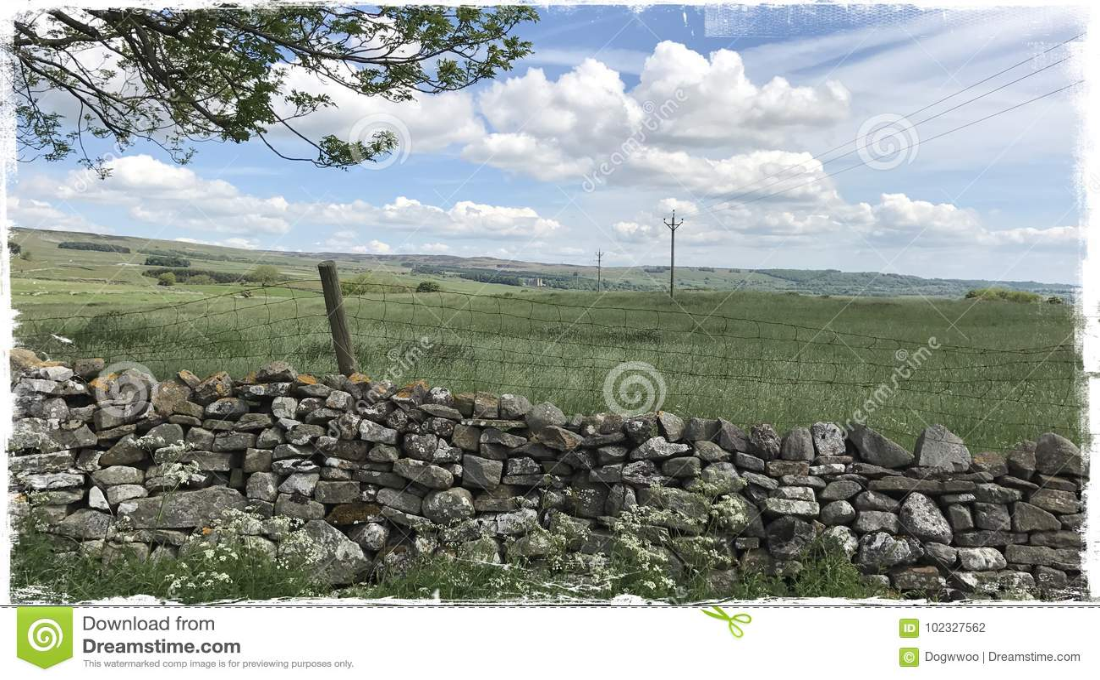 Wensleydale Yorkshire