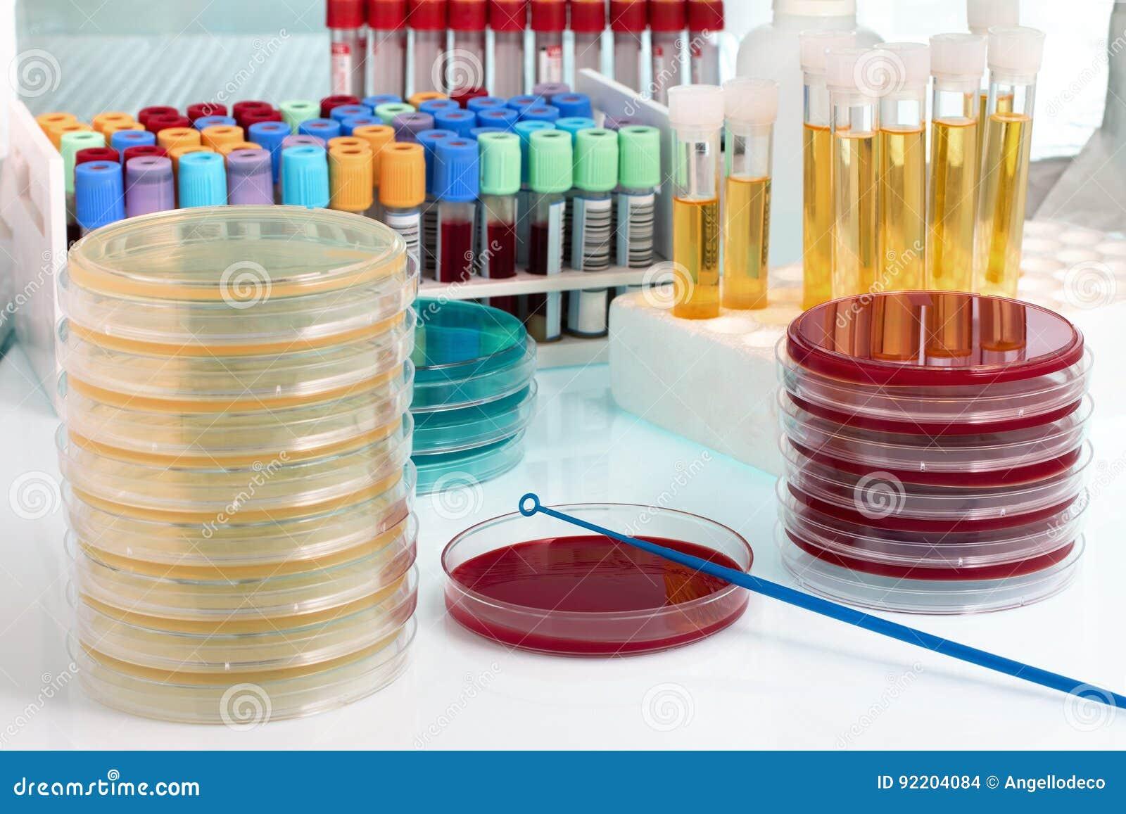 Werkbank met biologische monsters op het de microbiologielaboratorium
