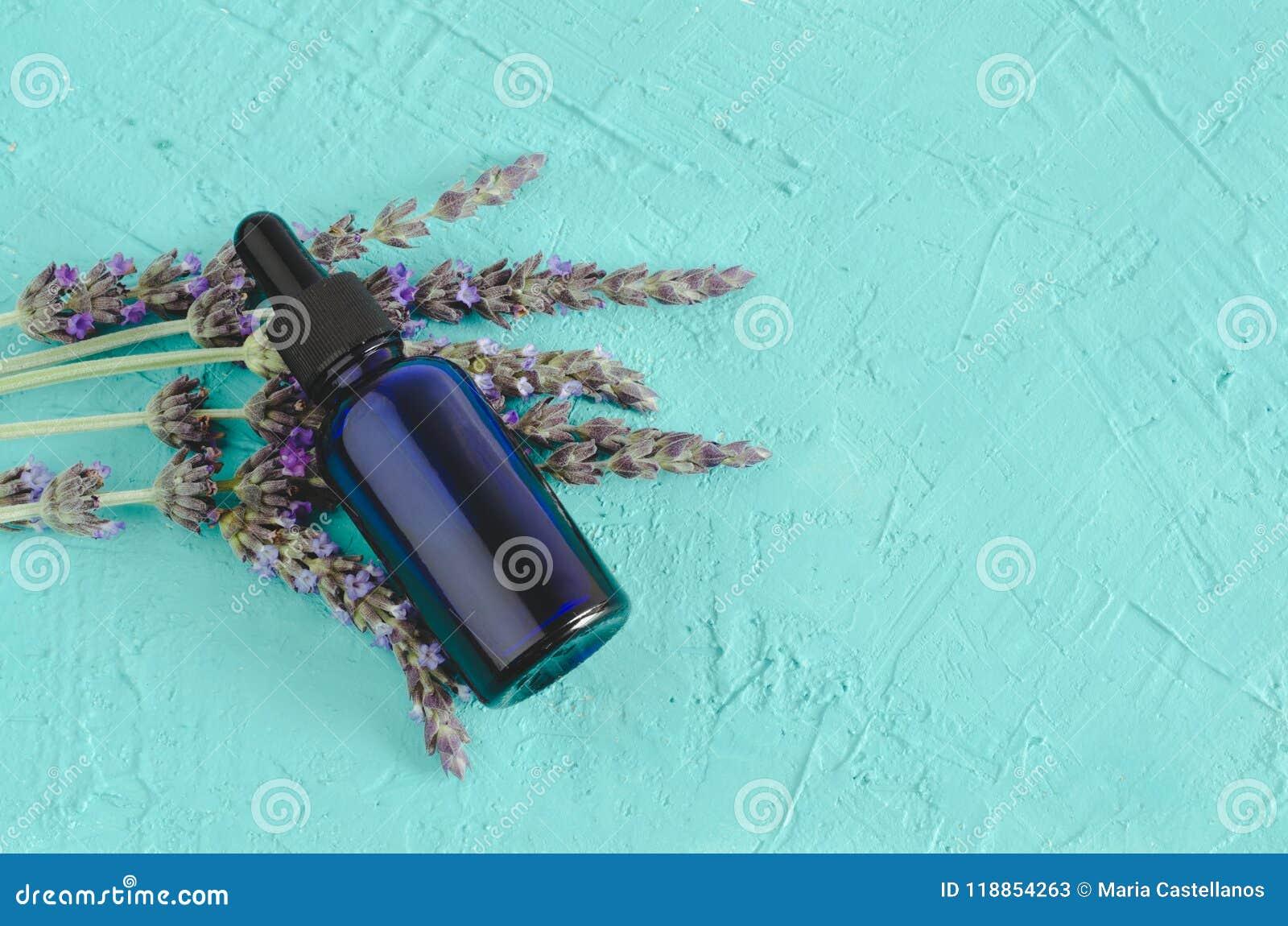 Wesentliches Schmieröl des Lavendels Blumen und Flasche mit Pipette auf blauem Hintergrund