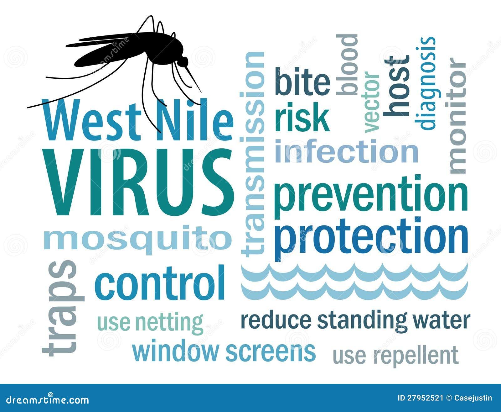Viral Word: West Nile Virus Word Cloud Stock Vector. Illustration Of