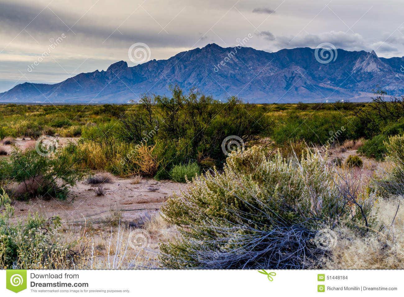 west texas landscape of desert area with hills  stock