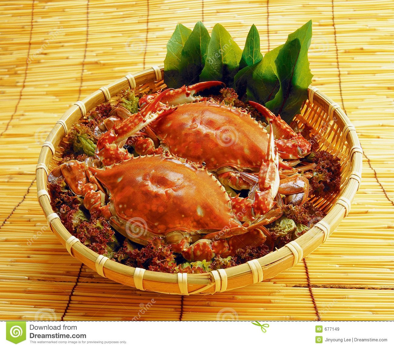 Western food royalty free stock images image 677149 for Cuisine western