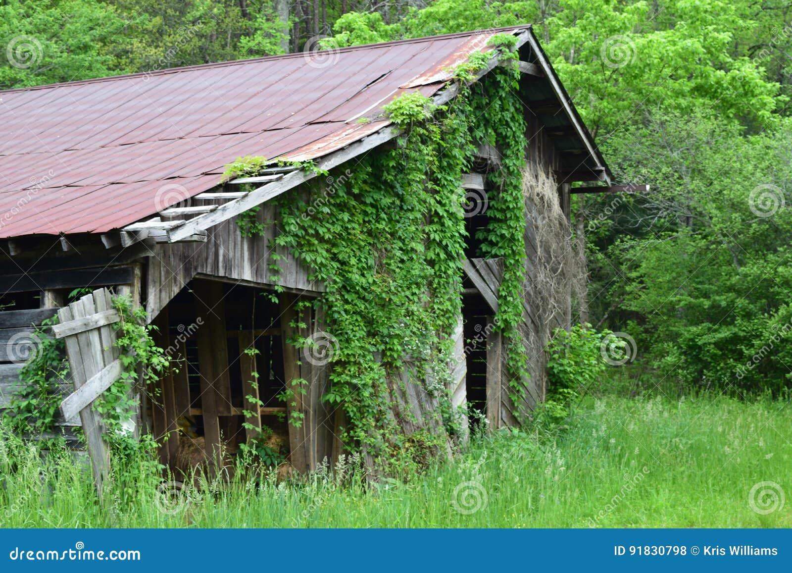 Western NC mountain old barn