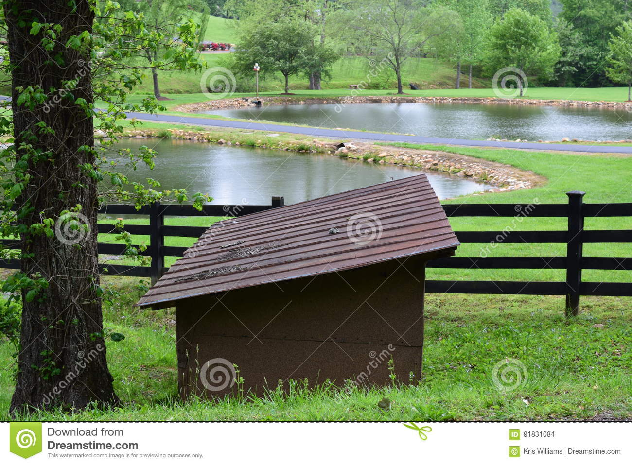 Western NC rural country mountain farm with two ponds