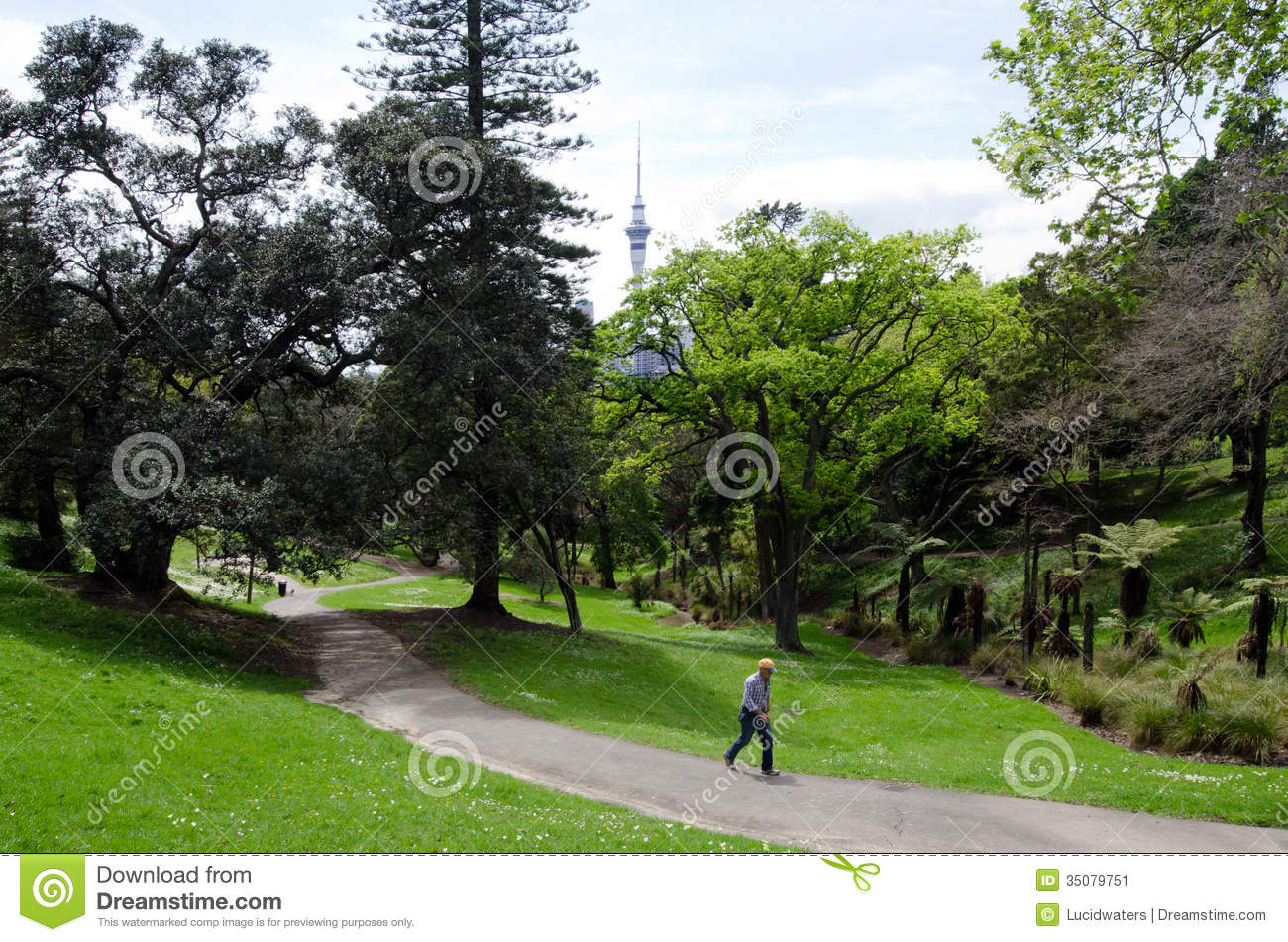 Western Park In Ponsonby Auckland New Zealand Nz Nzl Editorial