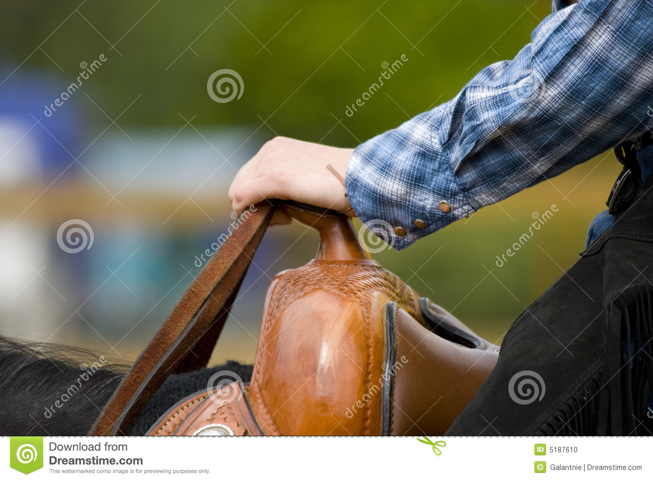 Western Riding Equipment Detail Stock Photo Image Of Horse Hand 5187610