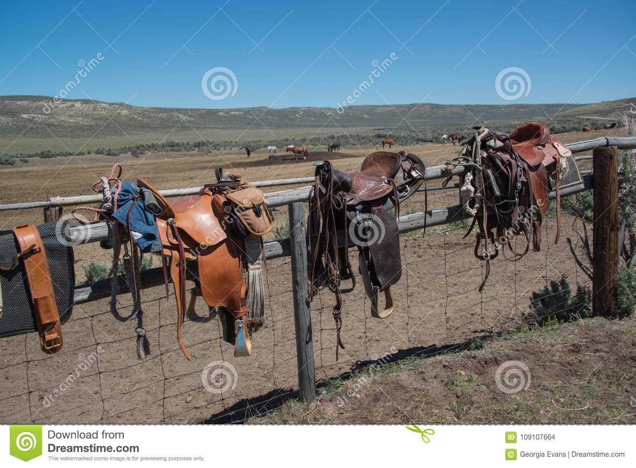 Western Riding Tack Saddles Bridles And Horse Blankets On Wooden Corral Post After A Trail Ride Stock Photo Image Of Americana Bridles 109107664