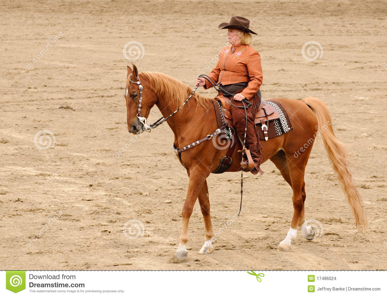 Western Horse Riding Clipart Western Tack On A Sadd...