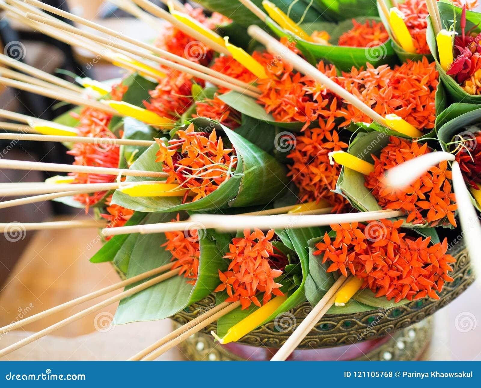 Westindischer Jasmin oder Ixora, Räucherstäbchen und Kerzen im Bananeblattkegel, der für einen nationalen Lehrer ` s Tag Wai Kru