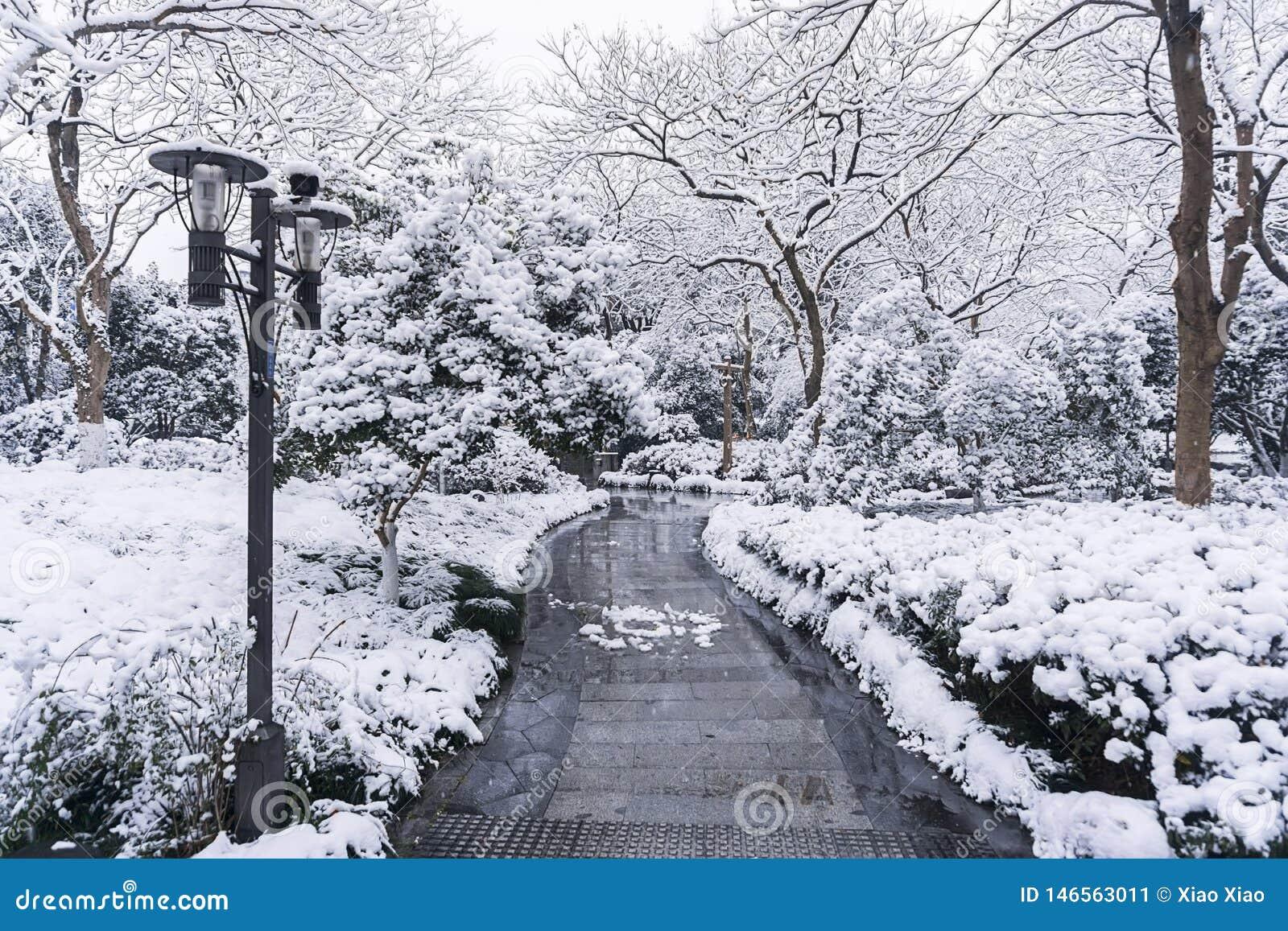 Westlake-Schneetag