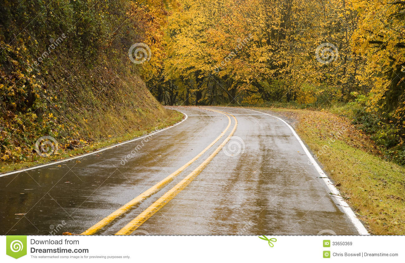 Wet Blacktop Two Lane Highway Curves Through Fall Trees ...