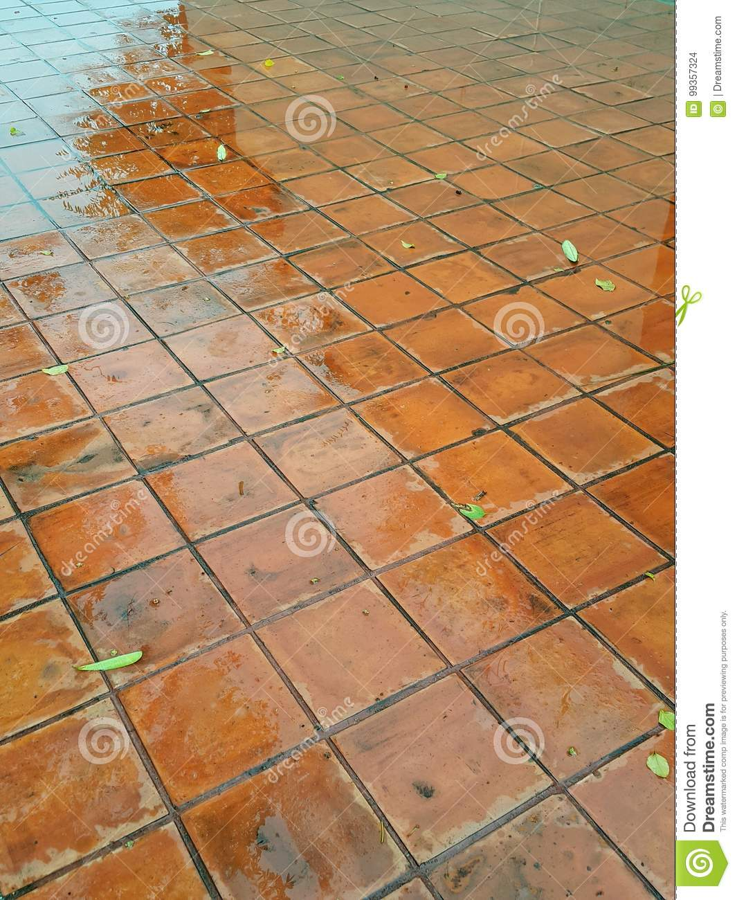 Clay Tile Flooring Stock Photo Image Of Expensive Hotel 99357324