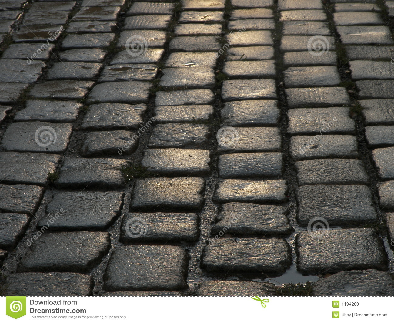 Wet Cobblestone Street Closeup Stock Photos Image 1194203