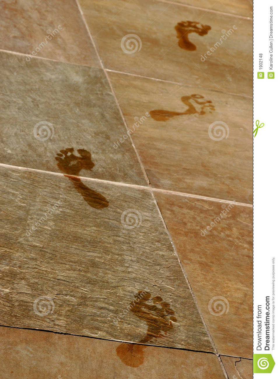 Wet Footprints Stock Photo Image Of Lifestyle Leisure