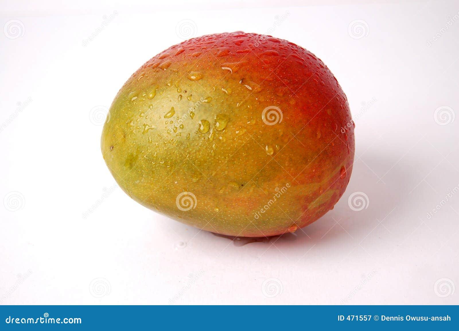Wet Juicy Mango