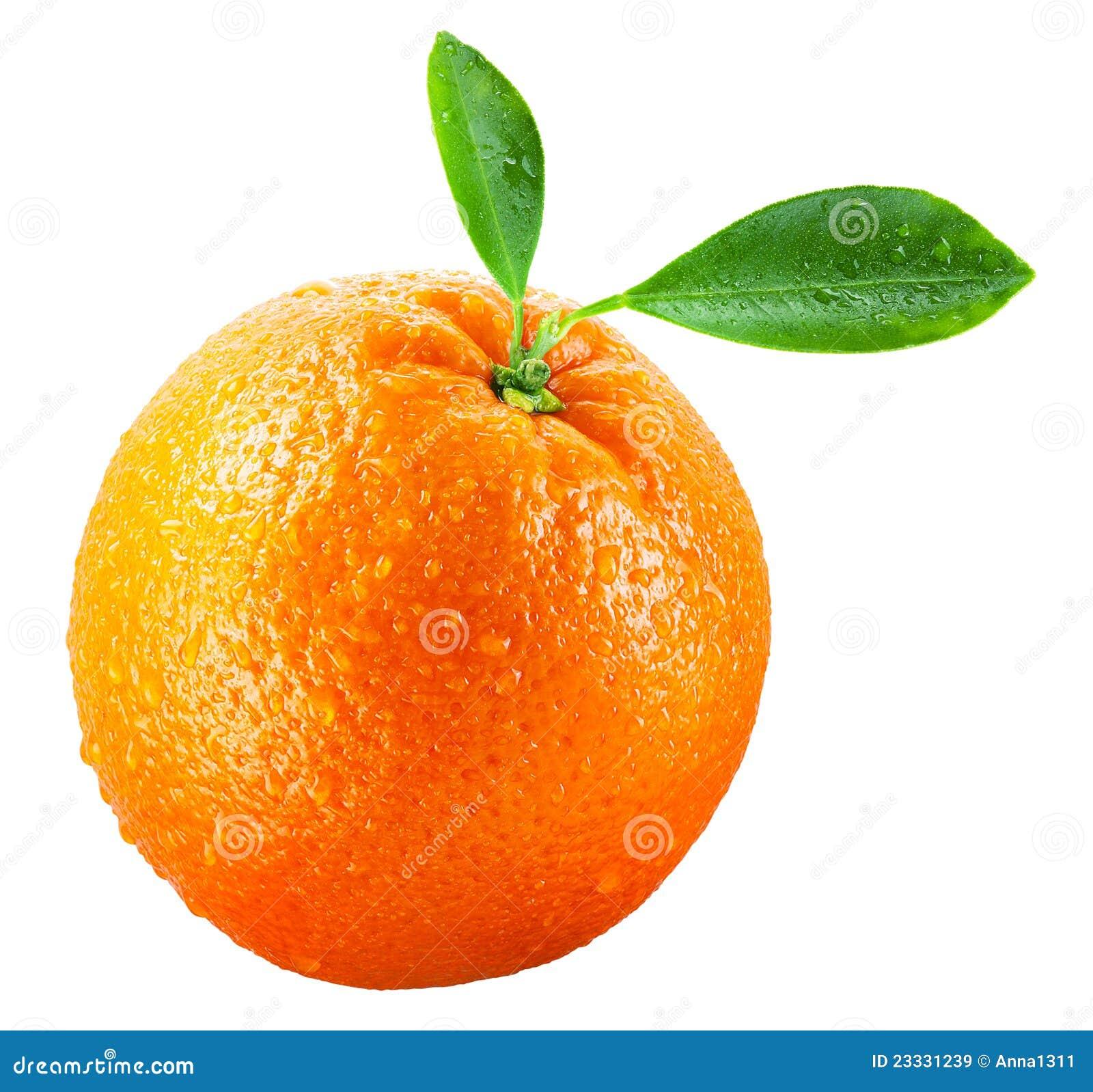 Wet orange fruit with leaves isolated on white