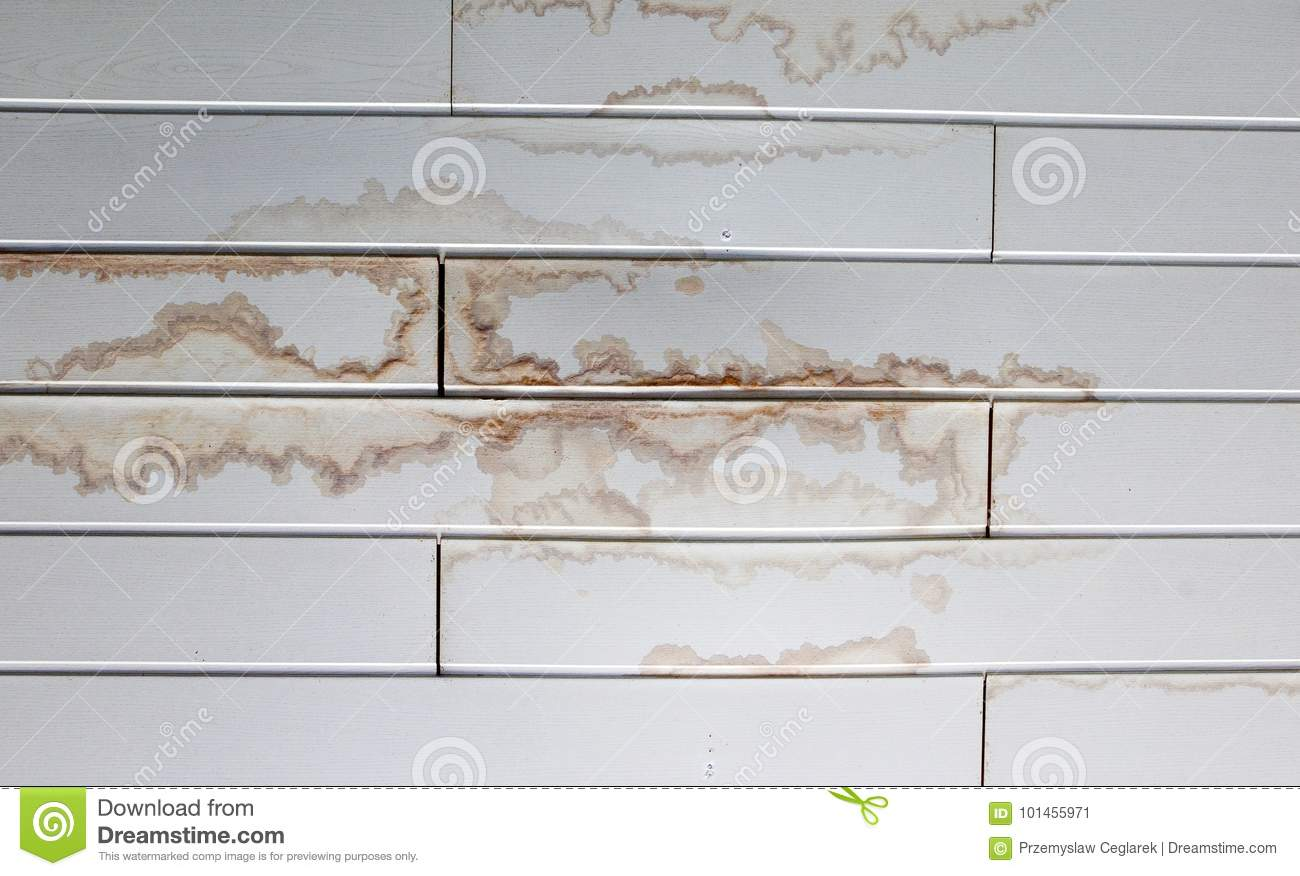 Wet stain stock image  Image of wall, home, panels, bacteria