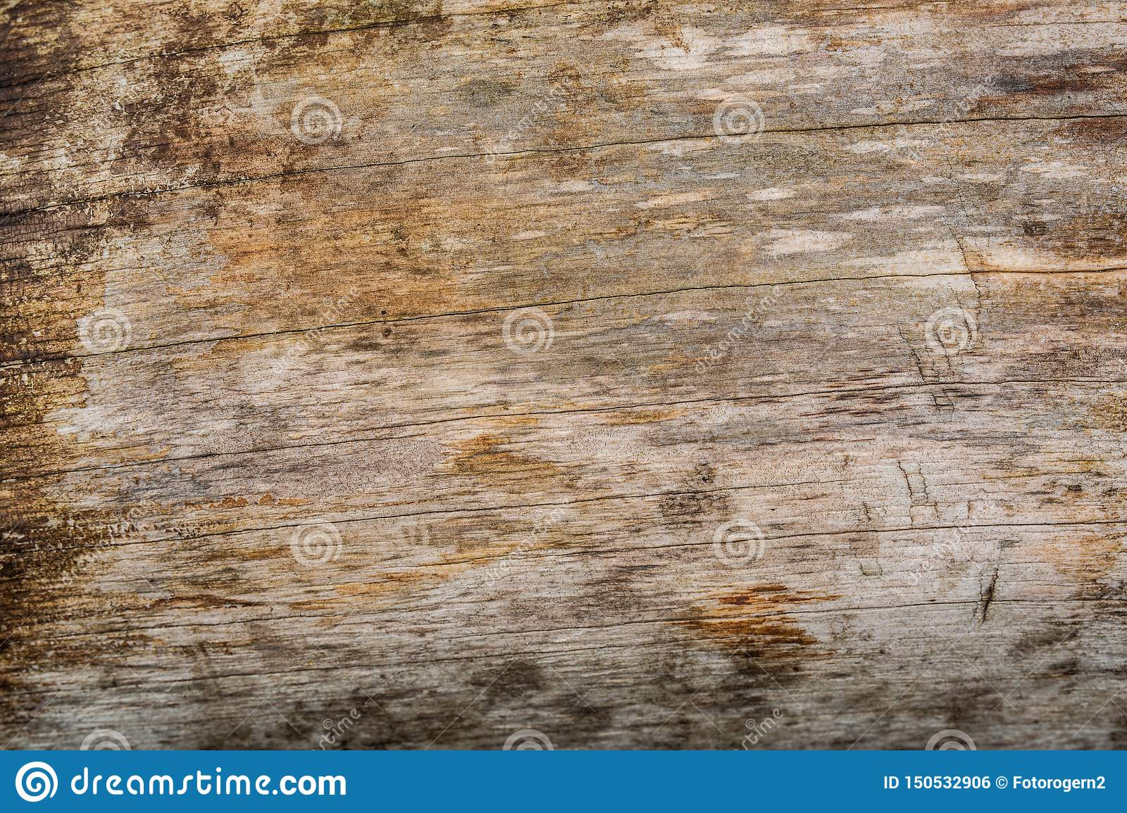 Wethered wood planks texture with scratched paint