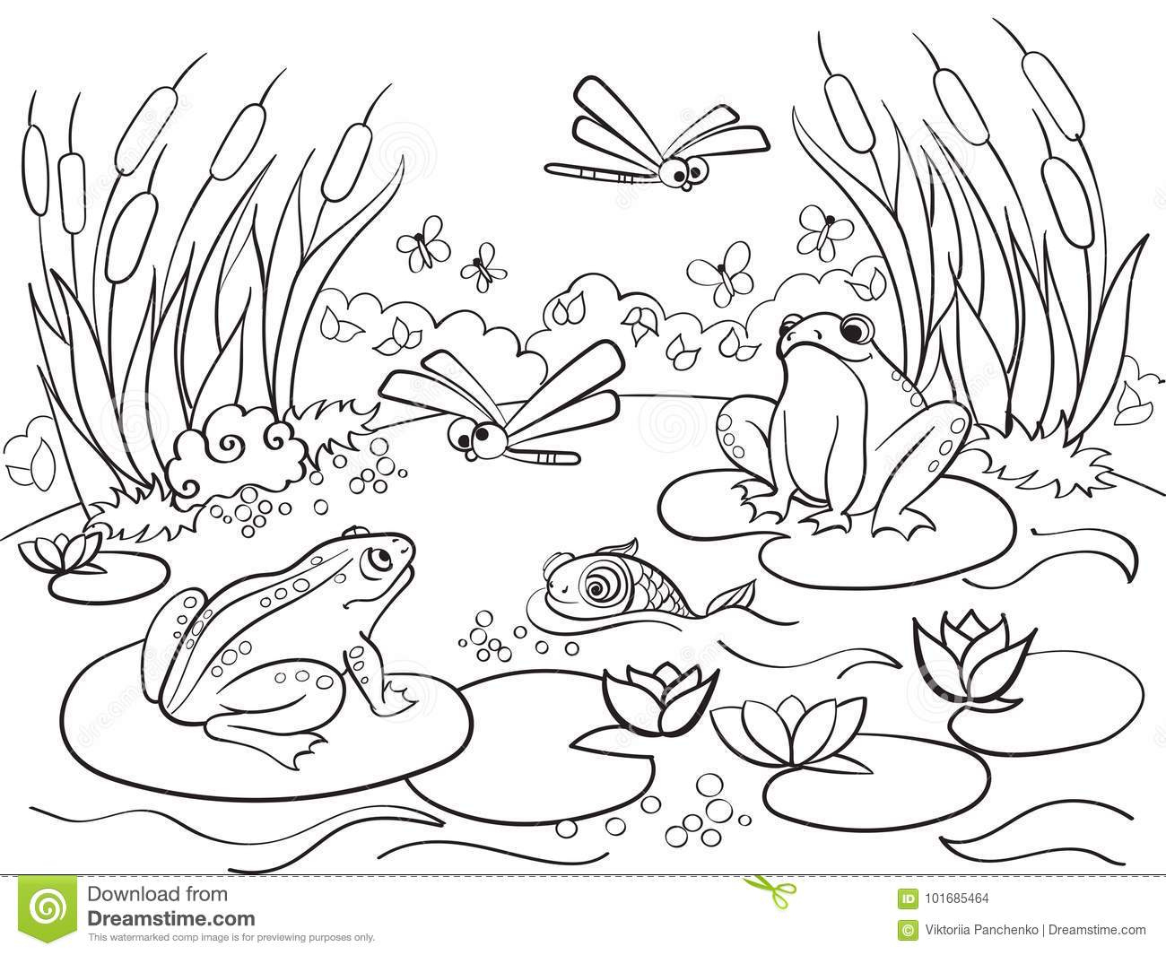 Wetland Landscape With Animals Coloring Book For Adults Raster Illustration Anti Stress Adult Black And White Lines Insect Frog Cane Dragonfly