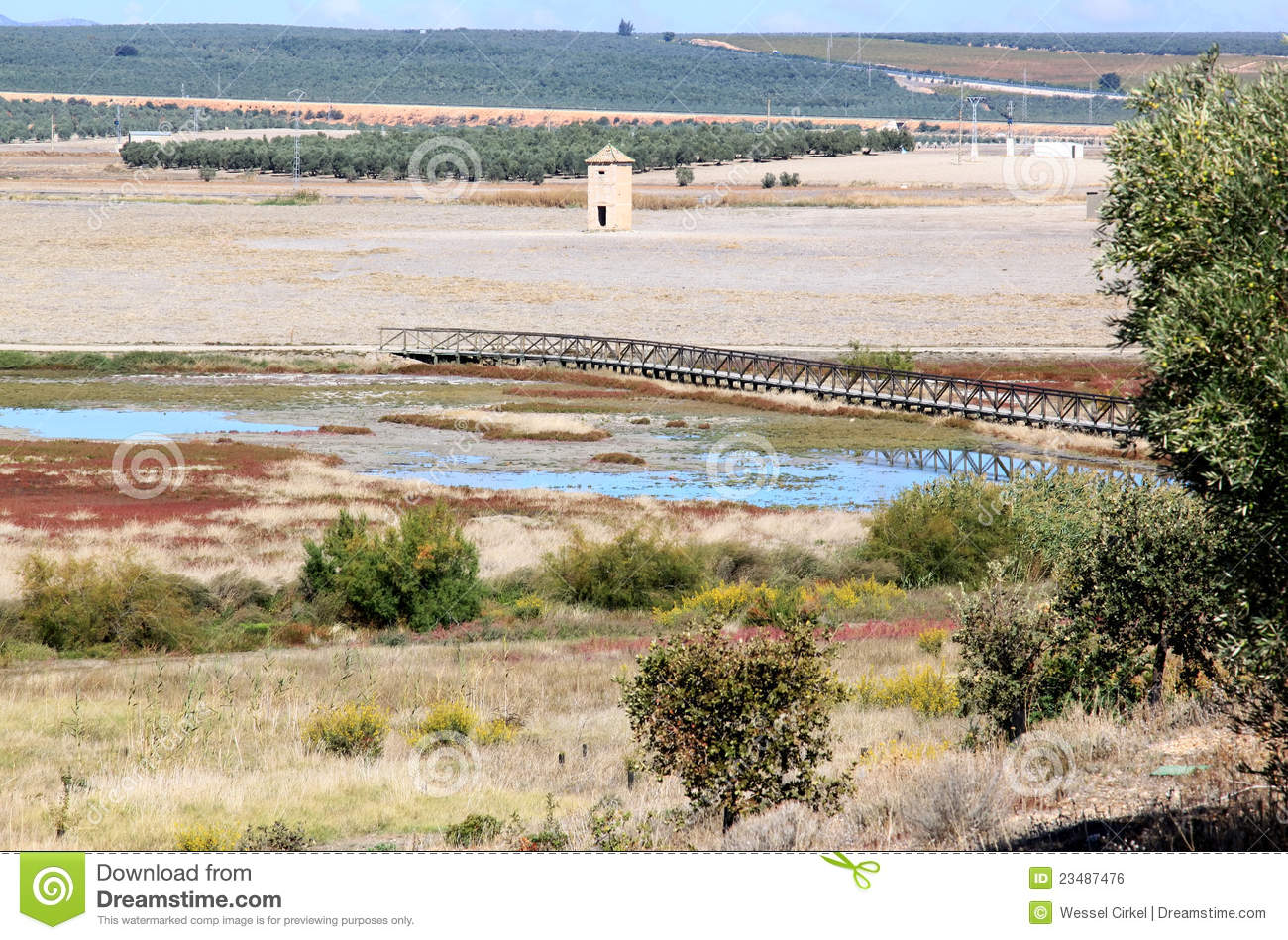 Wetland near fuente de piedra spain stock photo image - Fuentes de piedra ...
