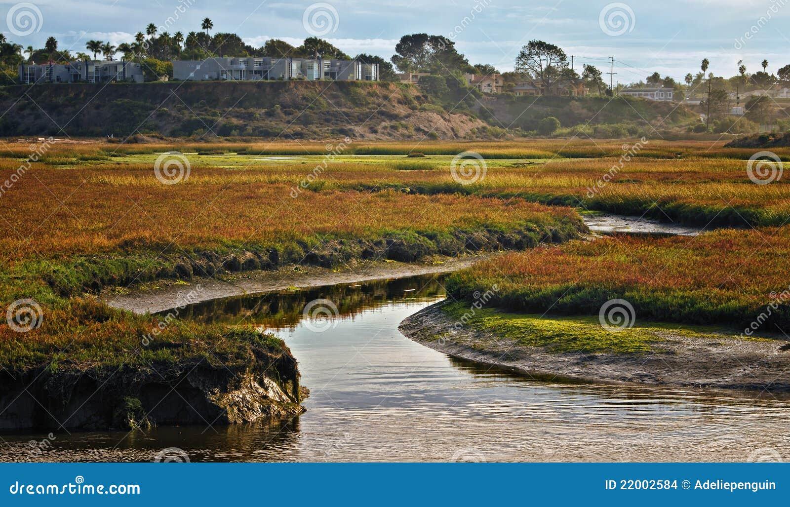 Wetlands, Cardiff, California