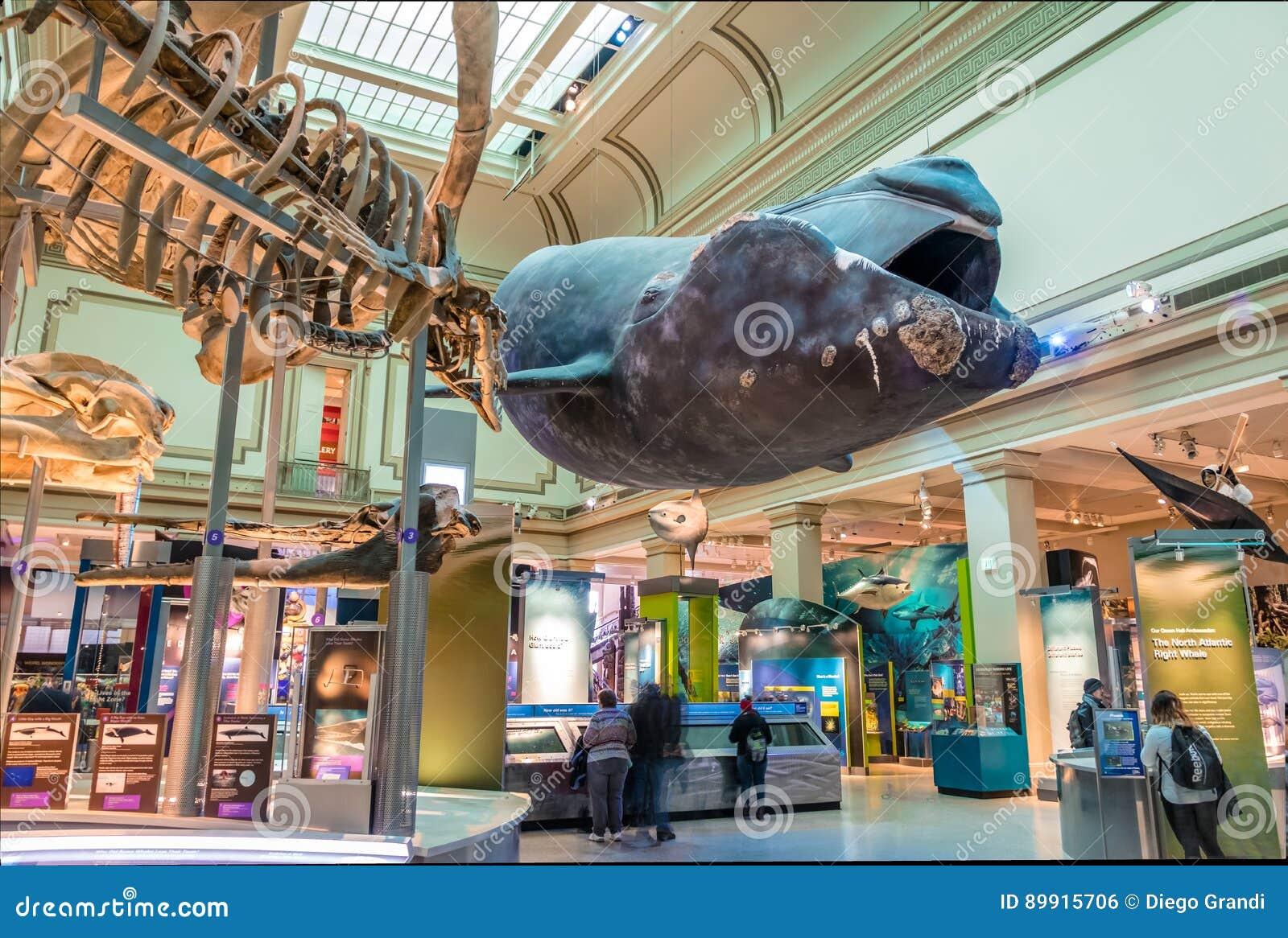 Natural History Museum Monterey