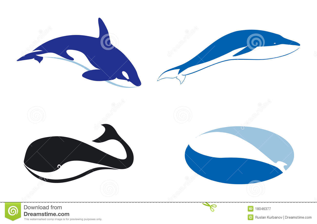 Whale Coloring Pages further Humpback Whales also Cartoon humpback whale tail ceramic tile 227273891078202900 as well 04 04 2016 Granny 105 Year Old Orca Returns likewise Draw A Whale. on humpback whale cartoon