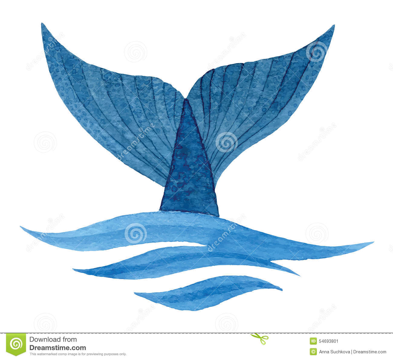 Whale Tail Stock Illustration Image 54693801