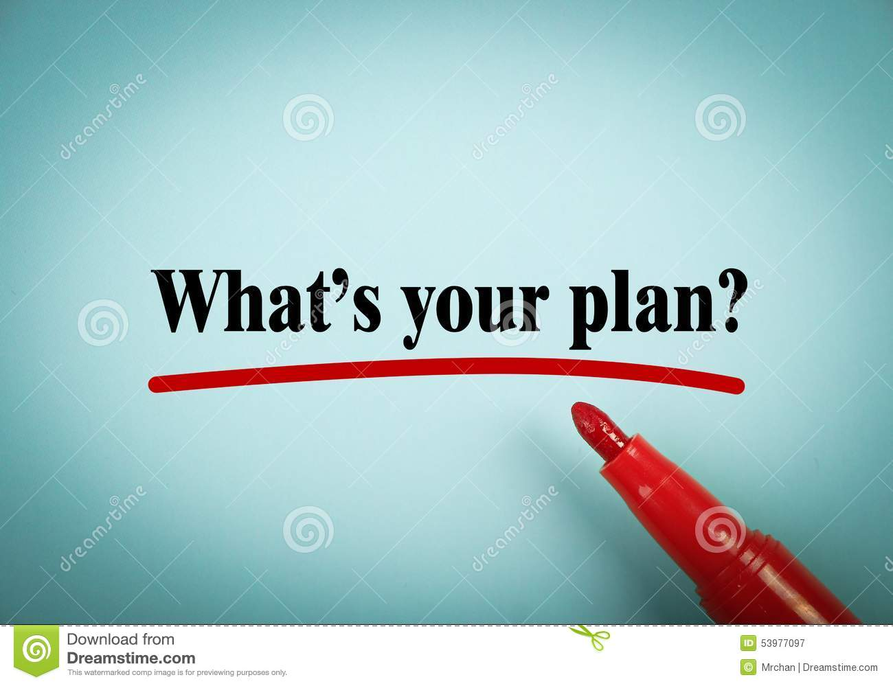 What is your future plan essay