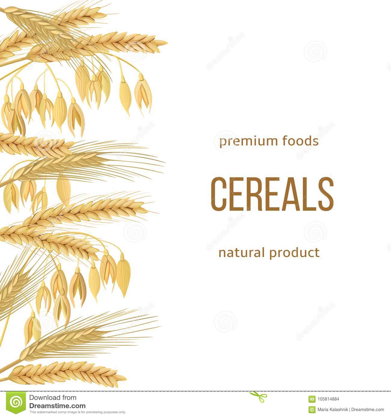 Wheat, Barley, Oat And Rye Set  Text Premium Foods, Natural