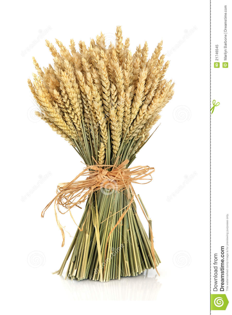 Wheat Bundle Royalty Free Stock Photo - Image: 21746545