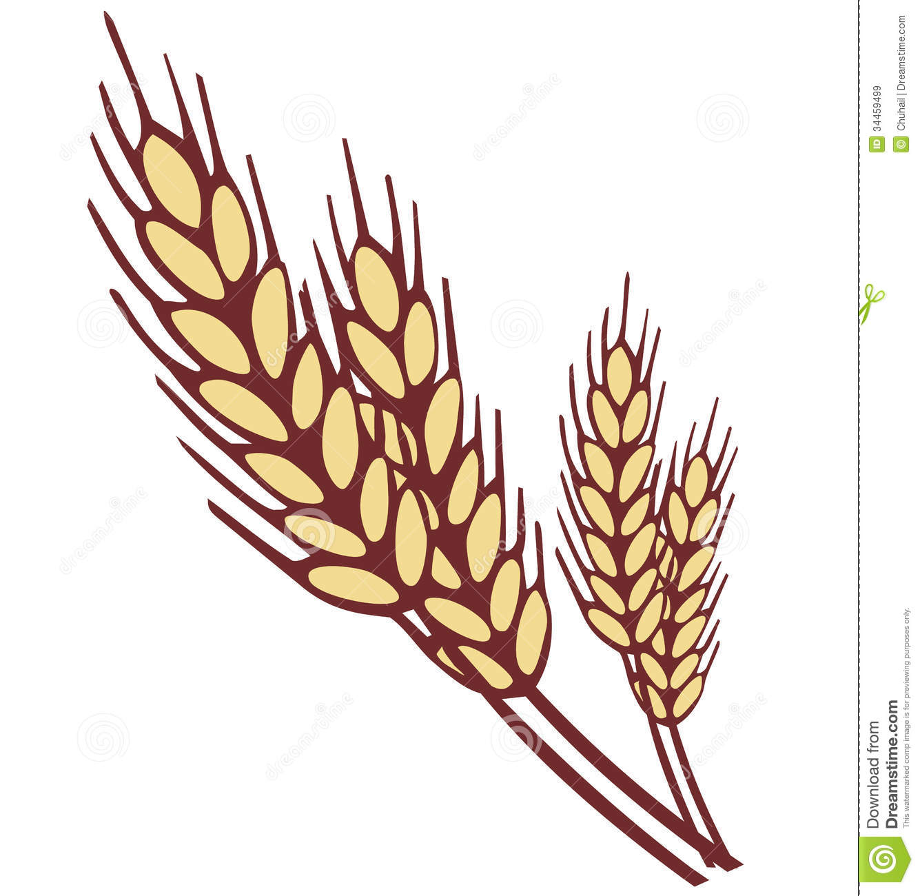Wheat Ear Royalty Free Stock Images - Image: 34459499