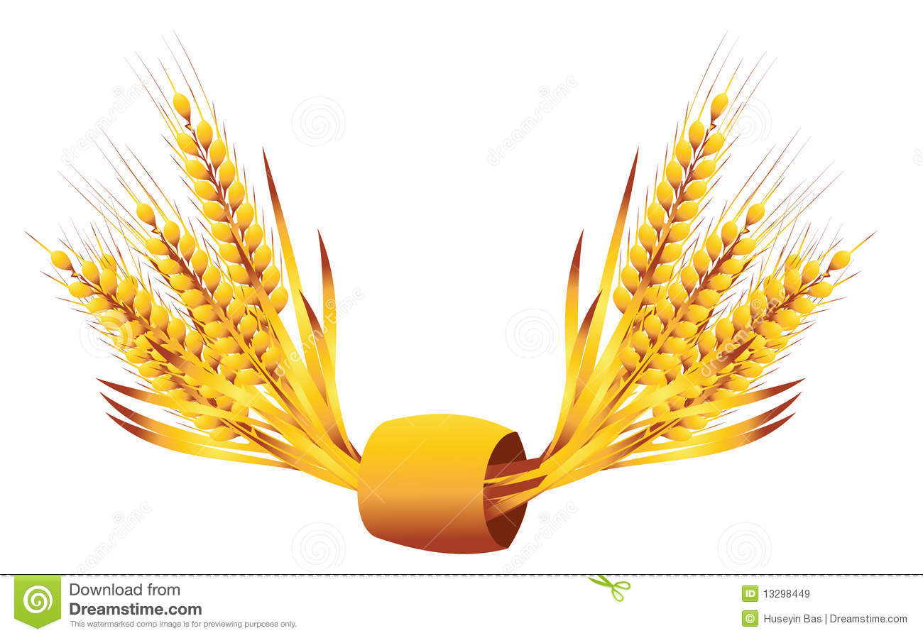 Wheat Ears Stock Vector. Image Of Baking, Crop, Award